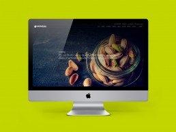 7 web NC