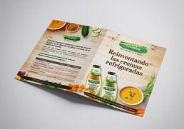 Diseño de folder, folleto. Maquetación