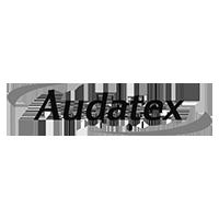 Audatex N